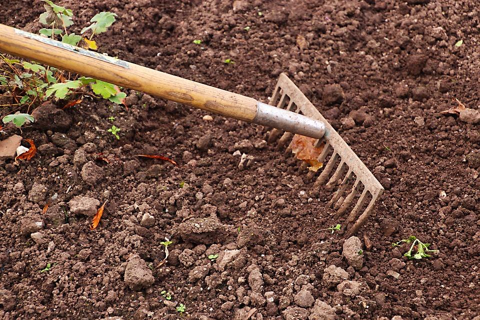 Jak na zazimování zahrady?