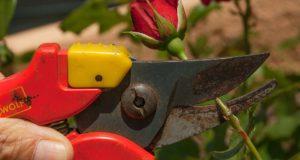 Jak pečovat o zahradní náčiní