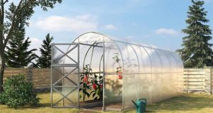 Proč si na zahradu pořídit skleník